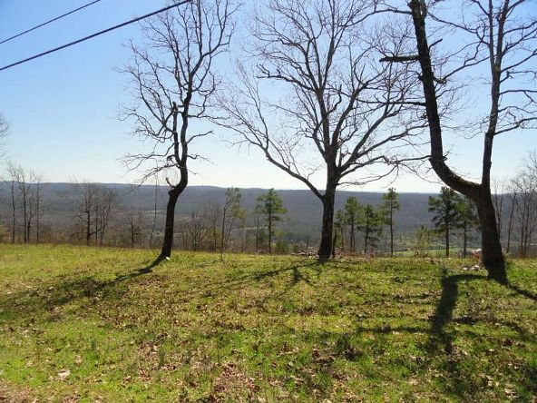 1.4 Ac Mt Riante Rd., Hot Springs, AR 71913 Photo 10