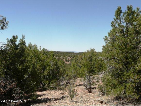 1024 Sierra Verde Ranch, Seligman, AZ 86337 Photo 26